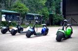 Migliore motorino elettrico di vendita della rotella della batteria di litio di 1000W 60V 12A Citycoco/Seev/2 (JY-ES005)