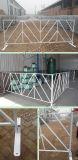 Barriera a controllo di linea delle barriere che recinta le barriere di controllo di folla del metallo
