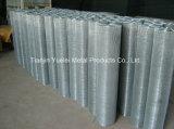 Il PVC ha ricoperto la rete metallica galvanizzata saldata del ferro, rete metallica galvanizzata tuffata calda, maglia galvanizzata saldata magazzino del filo di acciaio di memoria