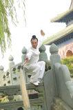 Vêtement à haute teneur de pratique du sport du ressort des hommes de Chi de Wudang Tai de Taoism et du lin textile d'été
