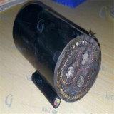 Cables électriques blindés isolés par XLPE de cuivre de conducteur (YJV-32)