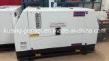 10kw/12.5kVA generator met de Diesel die van de Generator van de Macht van de Motor Perkins de Vastgestelde Reeks produceert van de Generator van /Diesel (PK30100)
