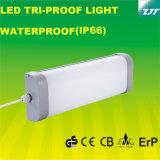 세륨 IP66를 가진 300mm 세 배 증거 LED 빛