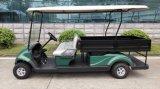 De Doos van de lading, de Elektrische Kar van Golf 2 Seater