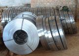 430 acier inoxydable Coils/Ba-Cold roulé