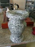 Losa blanca beta del granito del azulejo gris del granito G623 de Bianco Sardo