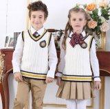 Одежды способа хлопка фабрики изготовленный на заказ для школьной формы студентов