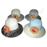 Sombreros del compartimiento de la paja del sombrero de ala del verano de la manera