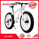低価格のFatbikeの脂肪質のバイク20、24の26インチの販売の販売のための脂肪質のタイヤのバイクの雪の蹴りのバイクを卸し売りしなさい