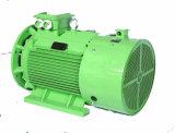 Il Pm Eco sincrono a magnete permanente amplifica il motore elettrico Sf1.2 (JPM-180M30-37) fase rispettosa dell'ambiente di alta efficienza di multi