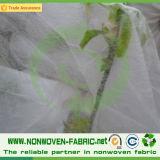 地被植物のためにNonwoven紫外線安定させたPP