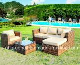 고리 버들 세공 2016 또는 등나무 옥외 가구를 위한 최신 인기 상품 정원 소파
