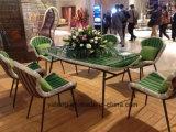 Ensemble de salle à manger en rotin meuble de style design moderne avec table et chaise par set de 6 et 8 personnes (YT896-1)