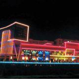 Фасад средств СИД освещая линейную пробку Ce/UL/RoHS (L-231-S48-RGB)