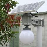 Tous dans une lumière solaire de cour de jardin de rue de DEL