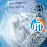 Injizierbares Steroids Solution Testosterone Propionate für Muscle Biilding