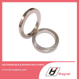 Anello magnete permanente neodimio/di NdFeB di bisogno del cliente di alta qualità per i motori
