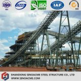 Structure en acier lourde solide de chevalet pour l'usine chimique