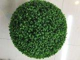 Piante e fiori artificiali di Boxwood Gu112808