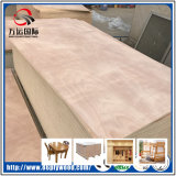 Chapas de madera muebles de chapa de pino Okoume Abedul Álamo Core Comercial