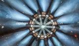 El más nuevo círculo rotatorio giratorio de la etapa de diseño que levanta el braguero modificado para requisitos particulares