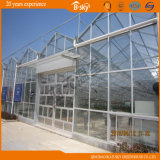 Jardim Glass Greenhouse da colheita com PC Sheet de Top