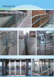 Tubi rotondi dell'acciaio inossidabile per la guardavia del balcone