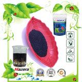 Alto fertilizzante dell'alga del potassio con solubilità 100%