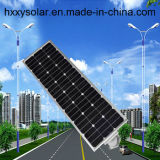 Facile d'installer le réverbère 100W solaire actionné intégré par lumière solaire