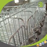 Deba van Qingdao de apparatuur die van het Varken van Broers het Zwangere Tarief van Zeugen verbeteren