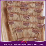 Human Hair Clip in Hair Extensions