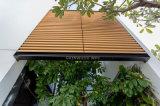 ヨーロッパ規格に従う57X32mmの装飾的な木ずり