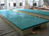 Muelle flotante de la fibra de vidrio del embarcadero (ZC/FD/FJ-02)