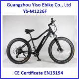 bici di montagna elettrica della gomma grassa 750W