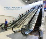 Tipo de interior y externo de la escalera móvil de la alta calidad de Aksen de la puerta