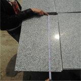 La pietra naturale copre di tegoli il granito grigio-chiaro per la parete dell'interno ed esterna