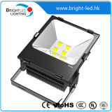 セリウム、RoHS Outdoor Fitting 100W LED Flood Light