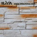 Interior e Exterior Wall Cladding Wall Tile Ledgestone (YLD-60)