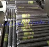 Caldo esagonale della rete metallica tuffato galvanizzato dopo la tessitura