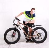 48V 5750W Bewegungsschnee-elektrischer Fahrrad-fetter Gummireifen-elektrisches Fahrrad
