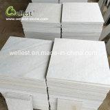 Плавательный бассеин плитки настила плитки кварцита Wellest чисто белый вымощая Paver плитки напольный