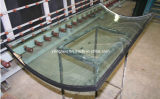 Doppio Glazed Glass per Building Curtain Wall, Window, Door
