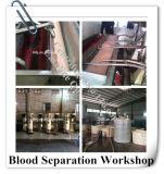 Machine de sang de cheval avec le modèle d'acier inoxydable