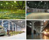 100W LED Gymnastik-Korb-Kugel-Sport Statium Highbay Lampe