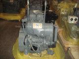 Naturalmente motor diesel del producto 245kg