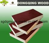 [شوتّرينغ] خشب رقائقيّ سعر & بناء خشب رقائقيّ [دوربلإكس] لأنّ إستعمال خارجيّة