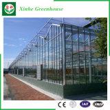 De Serre van het Glas van de multi-Spanwijdte van de tuin/van het Landbouwbedrijf/van de Tunnel voor nam/Aardappel toe