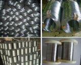 中国の工場供給によって電流を通される鉄ワイヤー