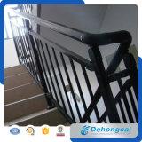 Уникально селитебные перила лестницы ковки чугуна безопасности (dhraillings-27)