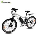 Moteur électrique de vitesse du vélo 48V 750W de montagne